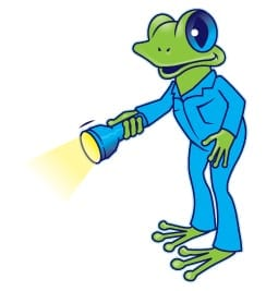 Frog with flashlight